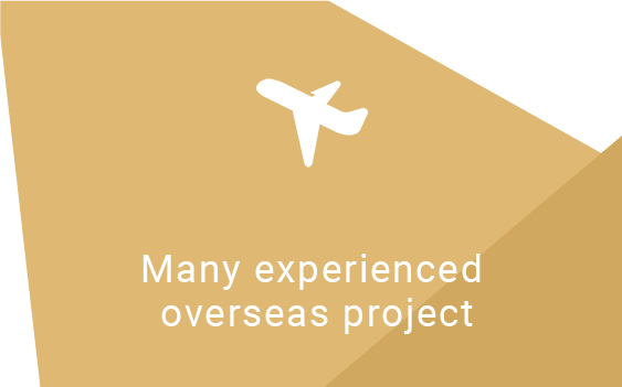Many experienced overseas project